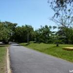 CAROLINA-Parque Julia de Burgos^P1090615-BIG