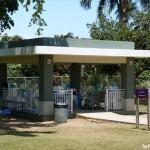 CAROLINA-Parque Julia de Burgos^P1090677-BIG